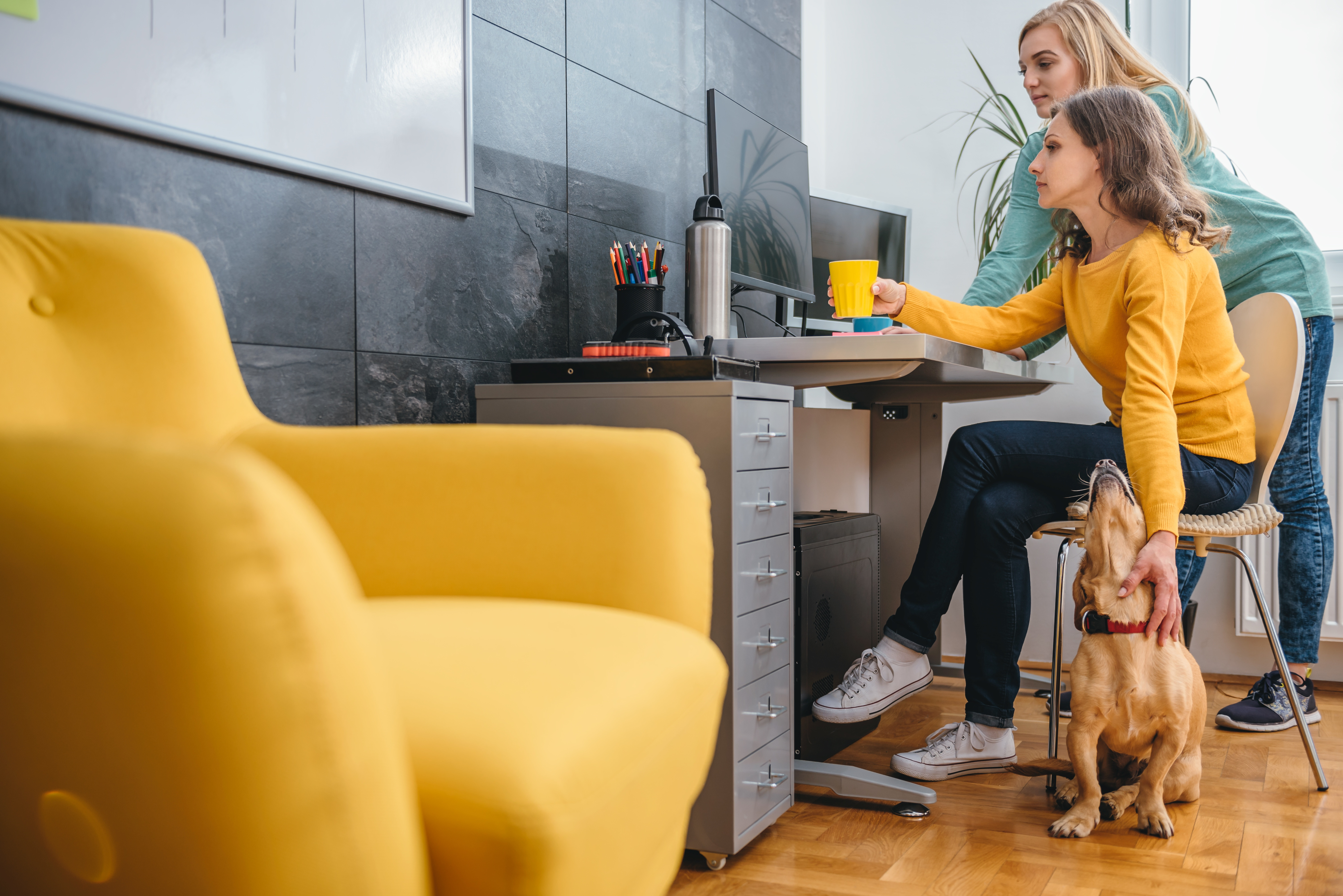 Bringing Your Dog To Work Makes For Happier Employees
